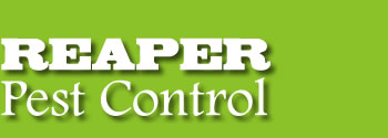 Reaper Pest Control Edinburgh Fife West Lothian Kinross